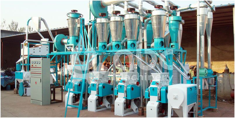 20tpd small flour milling machine set