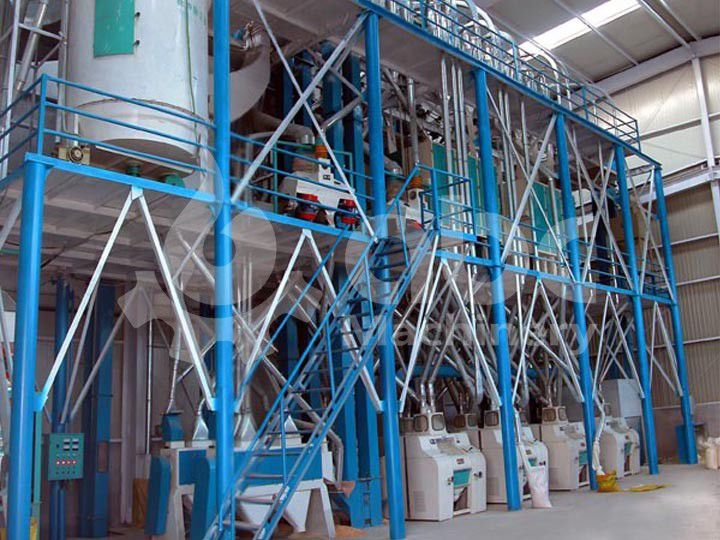 80TPD Wheat Seed Processing Plant in Ethiopia