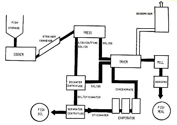 fish meal and fish oil processing flow design