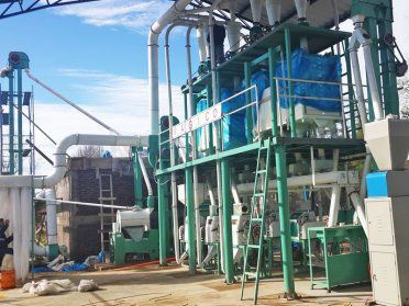 30 TPD wheat flour processing plant in chile