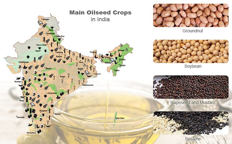 Main oil crops in India