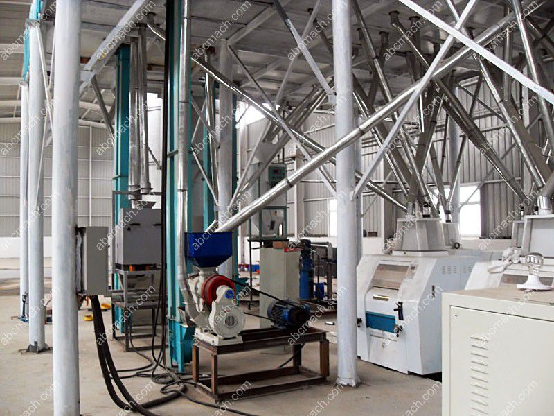 maize flour and grits plant
