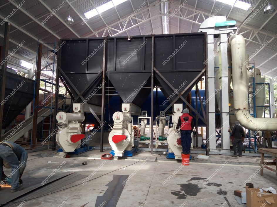 Pine and Eucalyptus Wood Pelletizing Line in Chil