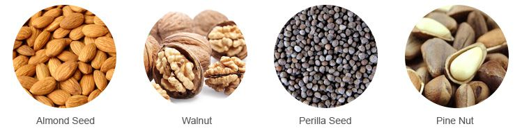 almond seed walnut perilla pine nut oil extraction