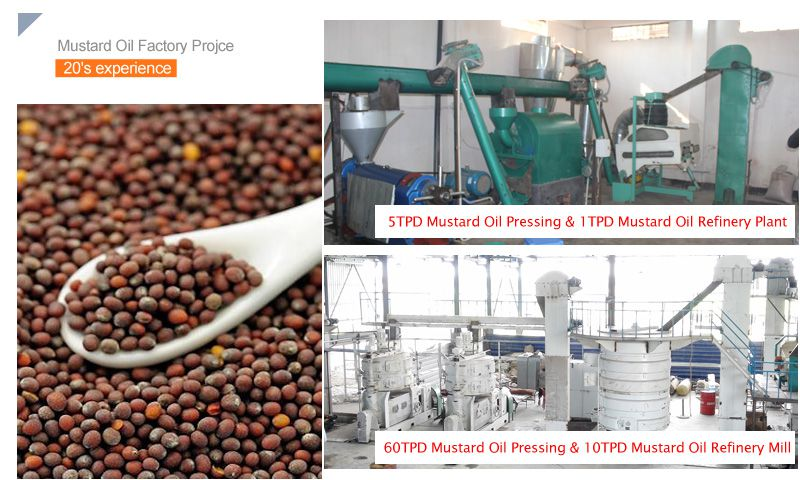 automatic mustard oil mill plant for sales