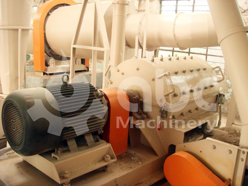 biomass raw materials crushing machine included in the plant