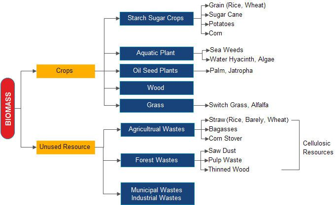 biomass materials for pellet production