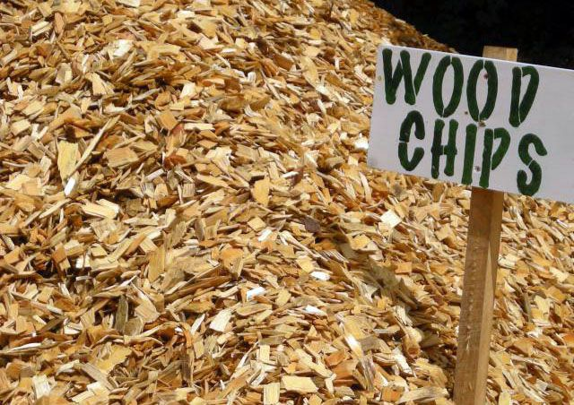 chestnut wood chips for making fuel pellets