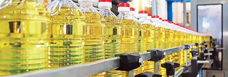start cooking oil manufacturing factory