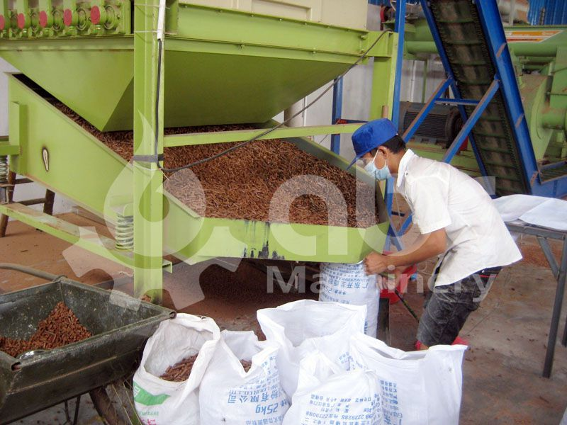 manufactured wood pellets from the biofuel production line