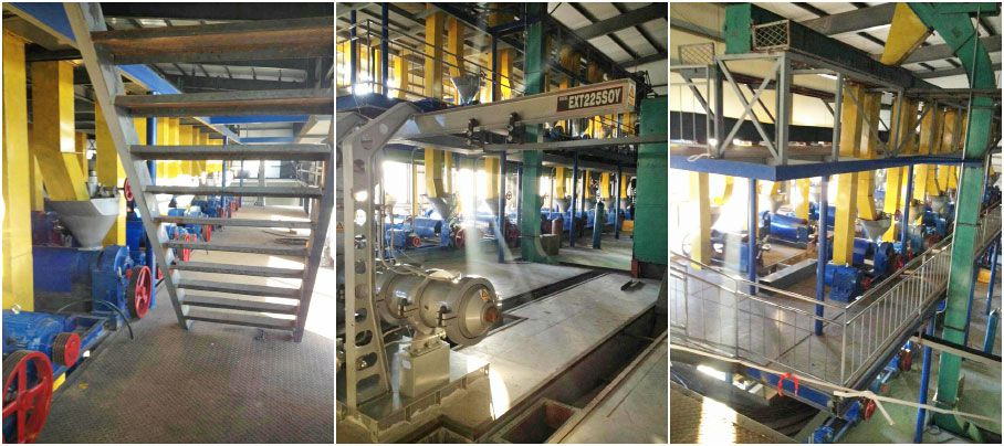 corn oil processing plant