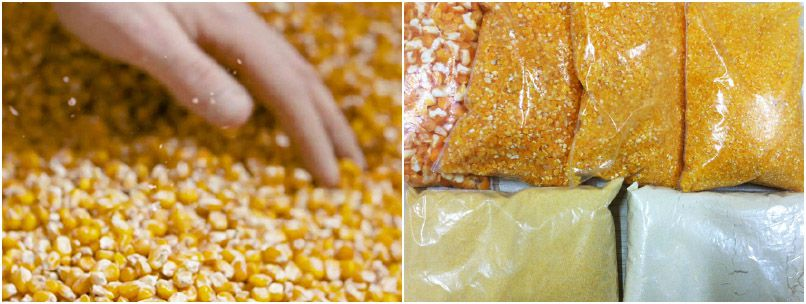 main corn processing products