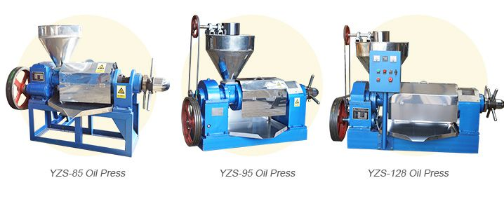 cotton seed oil expeller press for sale