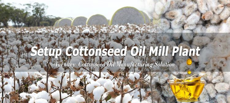 cottonseed oil production plan