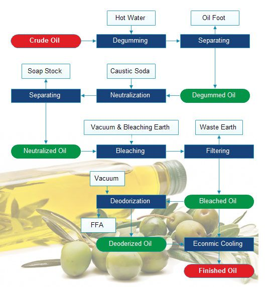 crude olive oil refining process
