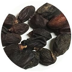 dried neem fruits