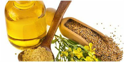 stard edible mustard seed oil business with Our Oil Mill Equipment
