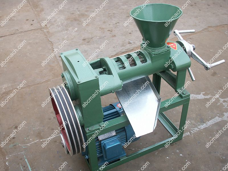electrical screw oil press for sale