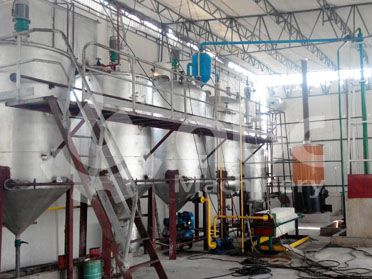 5TPD fish oil refining line built in Pakistan