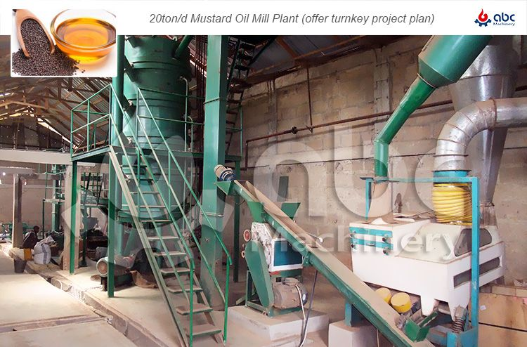 fully automatic mustard oil mill plant project report
