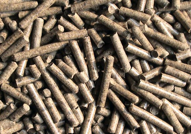 hardwood pellets produced by ring die pelletizing machinery