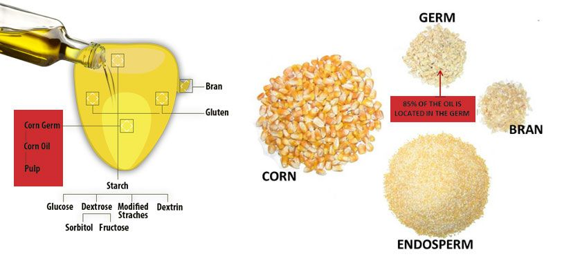 how corn oil is made