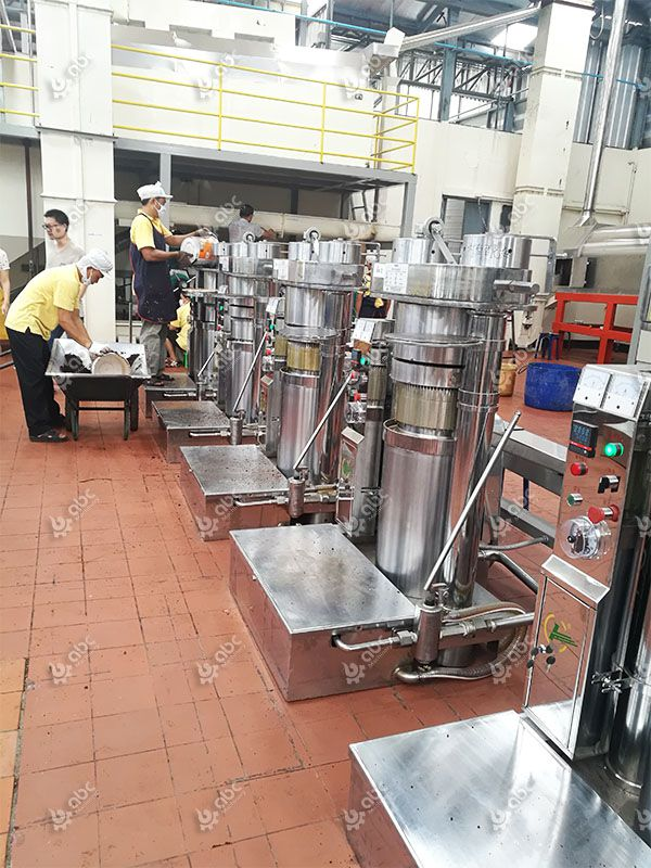 hydraulic sesame oil press machine for sale