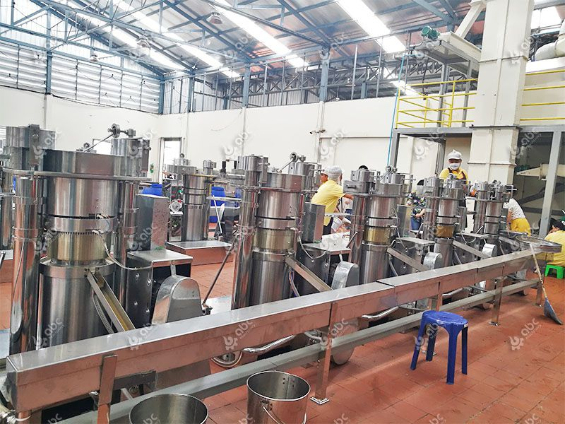 hydraulic oil press for sesame oil extraction