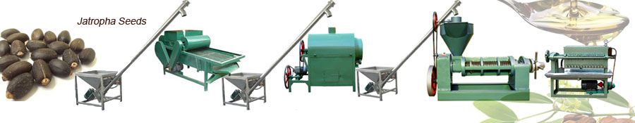 jatropha oil extraction machines for small seed oil processing mill