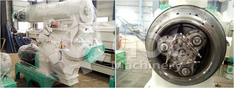 details of the ring die type large wood pellet manfuacturing machine