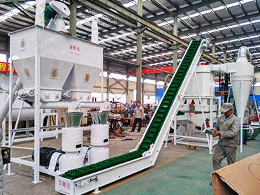 2 ton/h Livestock Feed Production Equipment Line