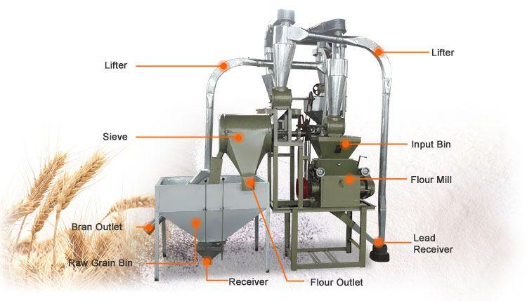 grain grinder machine for making flour from various cereal and beans