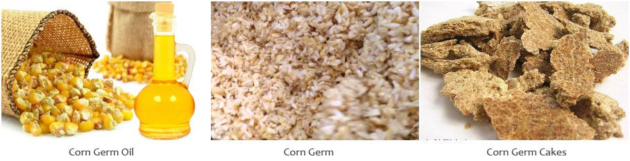 make corn oil from corn germ for edible or cooking usage
