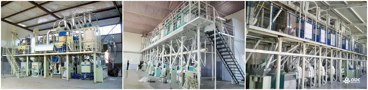 medium to large wheat flour mill factory project plan