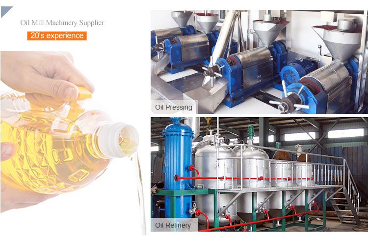 mini oil mill business equipment in India