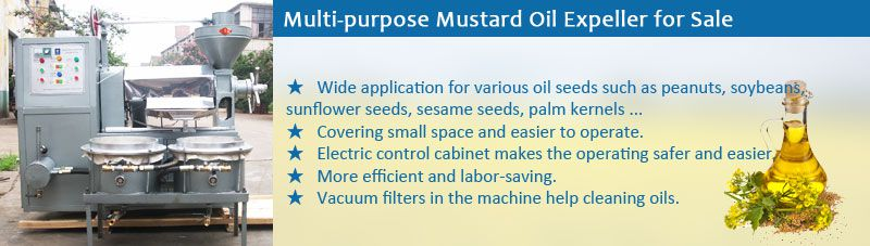 mustard oil expeller machinery for sale- cheap in price