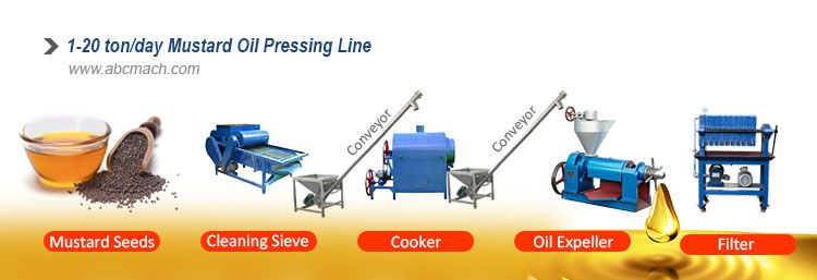 mustard oil mill processing steps