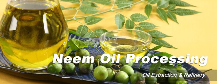 neem oil extraction