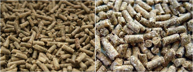 produce small scale oilseed cake / oil meal pellets for cattle cow
