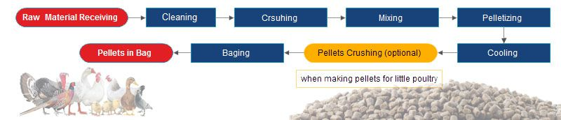 poultry feed pellet manufacturing process