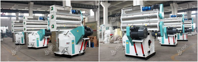 ring die livestock feed pellet equipment for manufacutring cattle feed