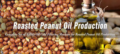 Cold Filtration Process of Roasted Peanut Oil Refinery in Brazil