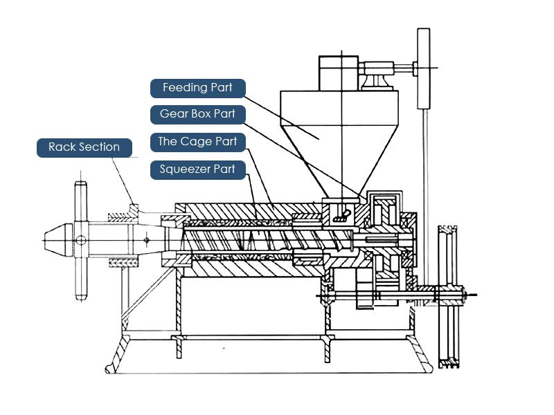 screw type sunflower oil machinery for small oil extruding plant