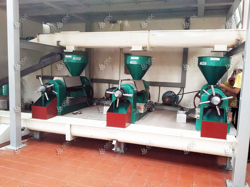screw sesame oil expeller press
