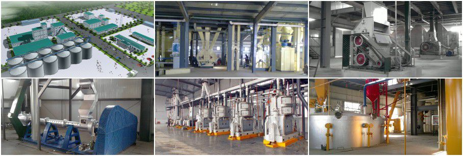 seed oil machinery for full sale oil extraction plant