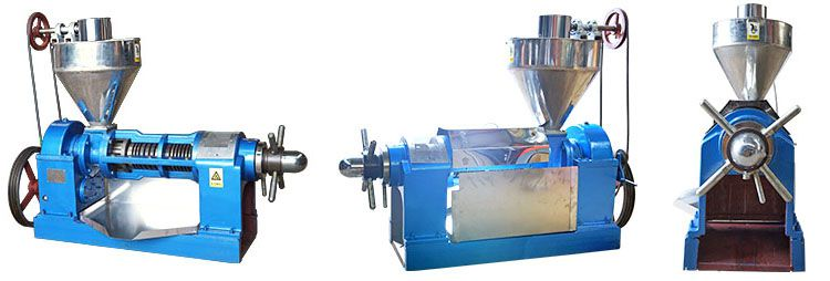 factory price sesame oil press machine expeller for sale
