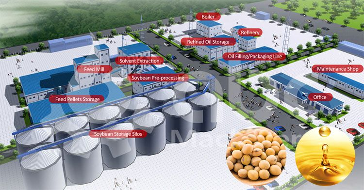 setup sunflower oil processing plant at low cost