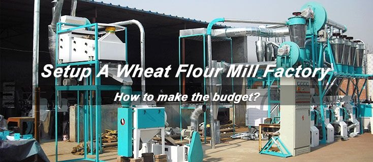 cost budget to setup wheat flour mill factory