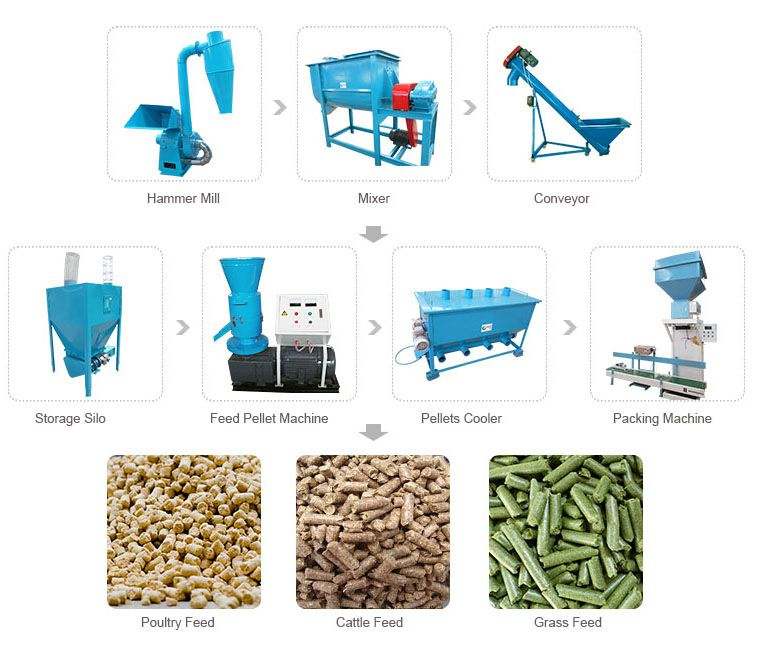 buy small animal feed plant for farm using