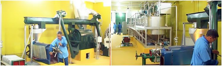 small complete cooking oil production plant for extract corn oil